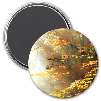"Sunlight "" in the forest"" 7.5 cm round magnet"