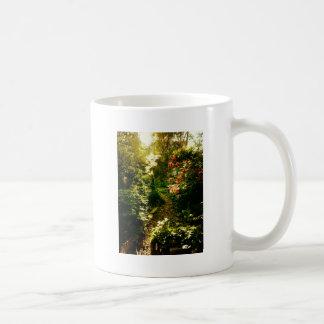 Sunlight Over A Garden Path Basic White Mug