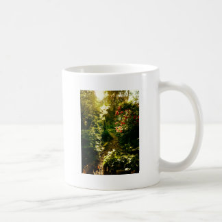 Sunlight Over A Garden Path Classic White Coffee Mug