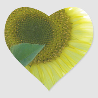 Sunlight Sunflower Heart Sticker