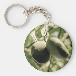 sunlight swingers key chain