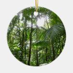 Sunlight Through Rainforest Canopy Tropical Green Round Ceramic Decoration