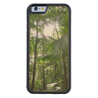 Sunlight Through Rainforest Canopy Tropical Green Maple iPhone 6 Bumper