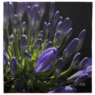 Sunlit Blooming Purple Agapanthus, African Lily Napkin
