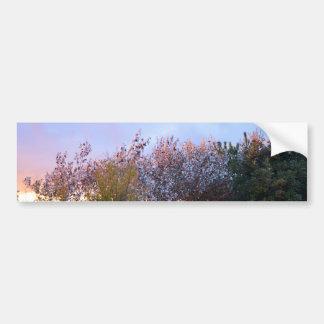 Sunlit Bushes Bumper Sticker