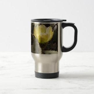 Sunlit Cactus Flower Mug