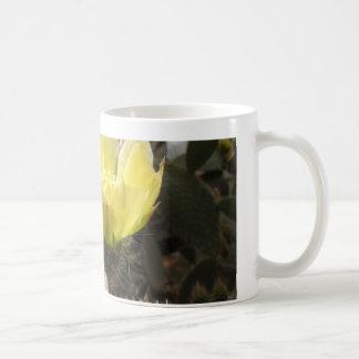 Sunlit Cactus Flower Coffee Mugs
