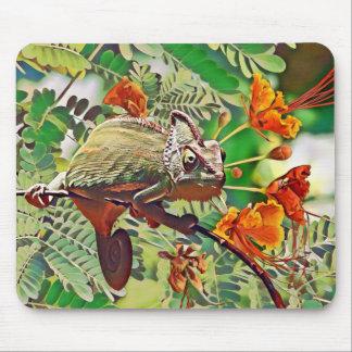 Sunlit Chameleon Mouse Mat