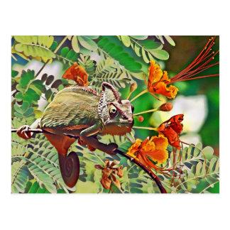 Sunlit Chameleon Postcard