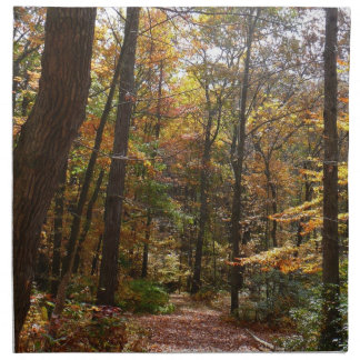 Sunlit Fall Trail in Laurel Hill State Park Napkin