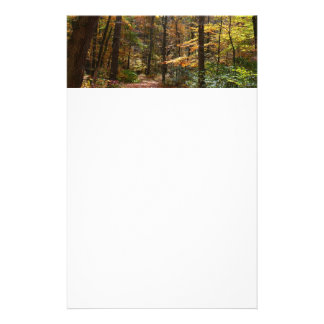 Sunlit Fall Trail in Laurel Hill State Park Personalized Stationery
