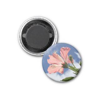 Sunlit Hibiscus 3 Cm Round Magnet