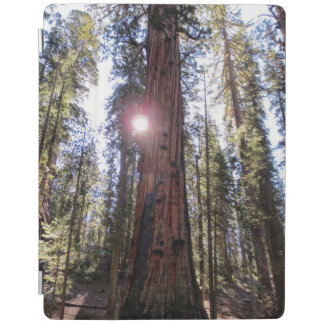 Sunlit Mountain Ipad Smart Cover iPad Cover