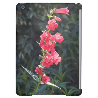 Sunlit Pink Penstemon Flower iPad Air Case