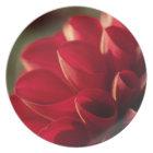 Sunlit Red Dahlia Melamine Plate