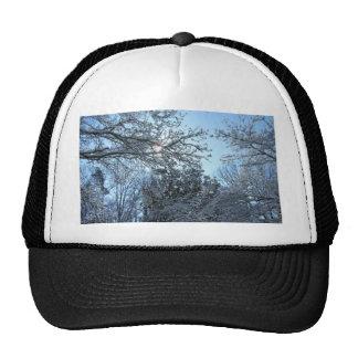 Sunlit Snowy Trees Starburst Blue Sky Winter Cap