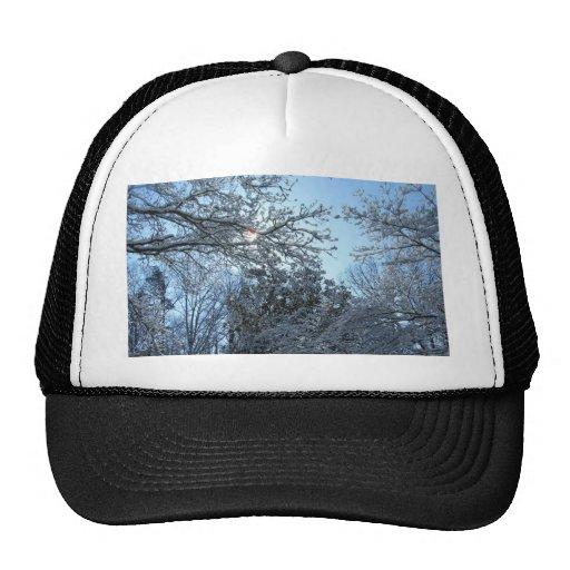 Sunlit Snowy Trees Starburst Blue Sky Winter Mesh Hats