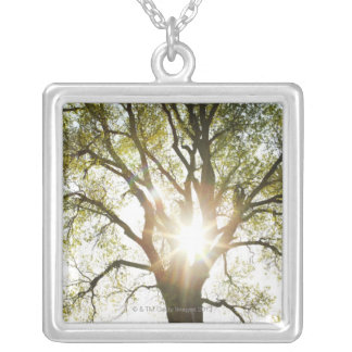 Sunlit Tree Silver Plated Necklace