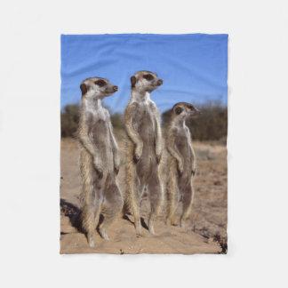 Sunning Meerkats Fleece Blanket