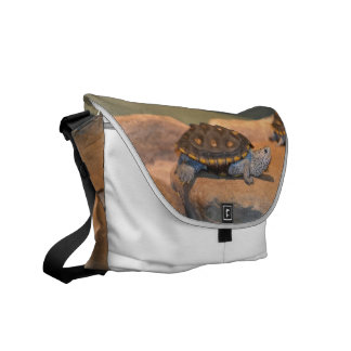 Sunning Turtle Courier Bags