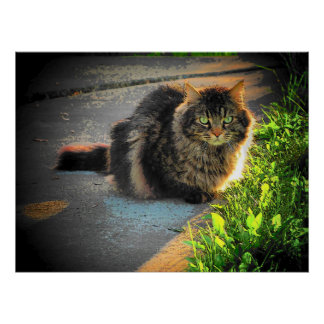 Sunny and Cold Grumpy Angel Cat by djoneill Posters