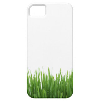 Sunny bright green grass earth photograph print iPhone 5 cover