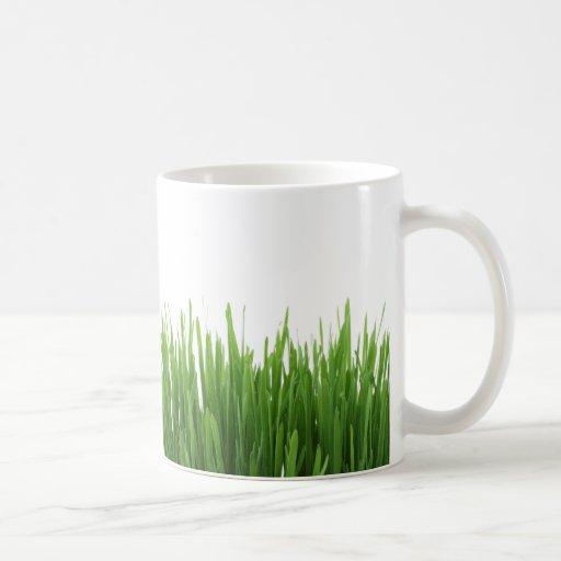 Sunny bright green grass photograph print coffee mugs