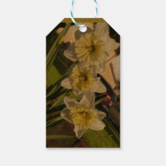 Sunny daffodils trio gift tags