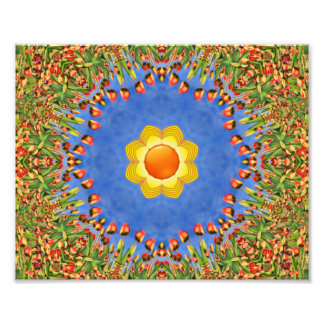 Sunny Day Colorful Photo Prints