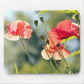 Sunny day poppies mouse mat