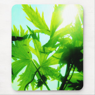 Sunny days mouse pad