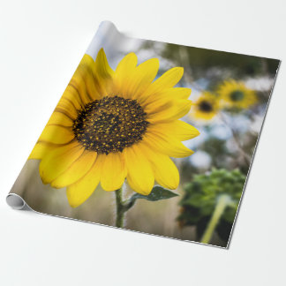 Sunny Daze Wrapping Paper