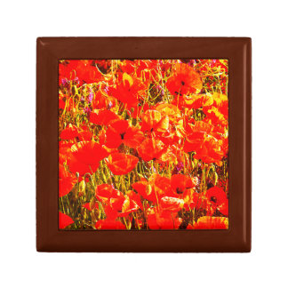 Sunny Field of Red Poppies Wildflowers Art Design Gift Box
