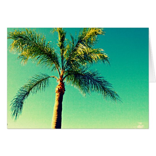 Sunny Florida Palm Tree Sky Picture Card