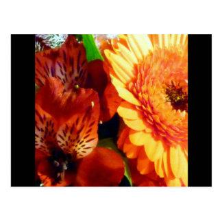 Sunny Flowers Postcard