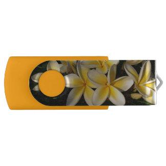 Sunny frangipanis USB flash drive