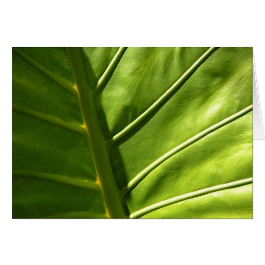 Sunny Leaf Card