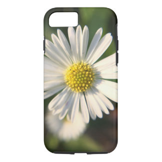 Sunny miniature daisy in close-up iPhone 7 case