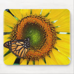 Sunny Monarch Butterfly Mousepad