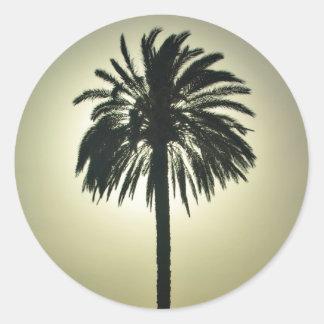Sunny Palm Classic Round Sticker