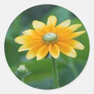 Sunny Round Sticker