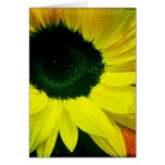 Sunny Sunflower Blank Greeting Card