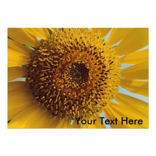 Sunny Sunflower -  Giant Yellow Center Close up Custom Invitations