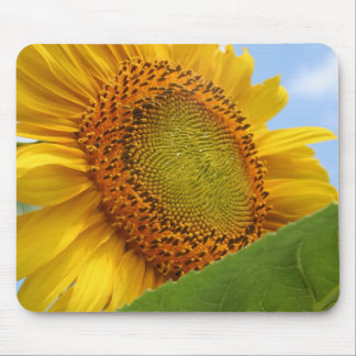Sunny Sunflower Mouse Mat