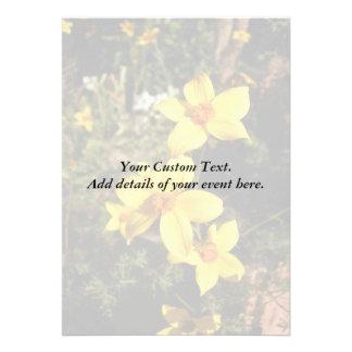 Sunny Yellow Flowers Bidens Custom Announcement