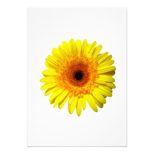 Sunny Yellow Gerbera Daisy Invitations