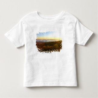 Sunrise at Cadillac Mountain with Hikers Toddler T-Shirt