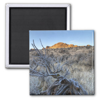 Sunrise at Squaw Creek, Owyhee County, ID Square Magnet