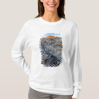 Sunrise at Squaw Creek, Owyhee County, ID T-Shirt