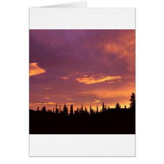 Sunrise Boreal Forest Alaska Greeting Cards